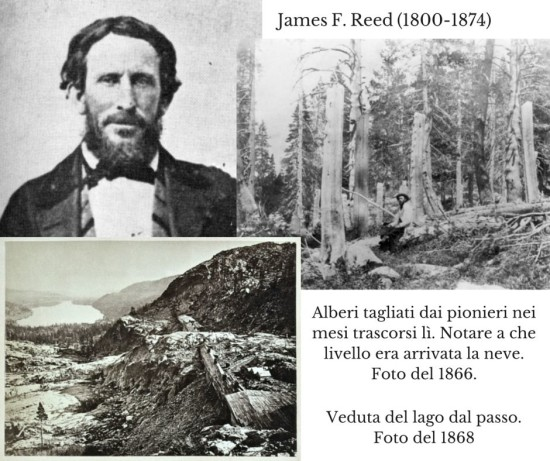 James F. Reed (1800-1874)